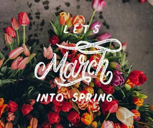 spring, flowers, and march image