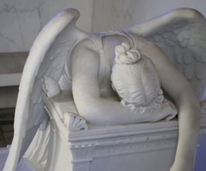 angel, feed, and statue image