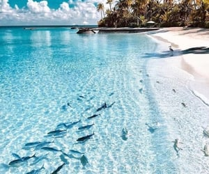 beach, wanderlust, and beautiful image