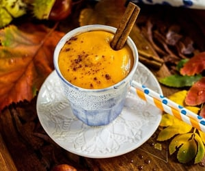autumn, soup, and food image