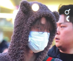 airport, bear, and exo image
