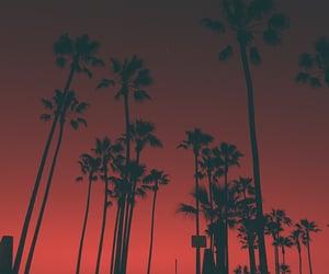beach, city, and la image