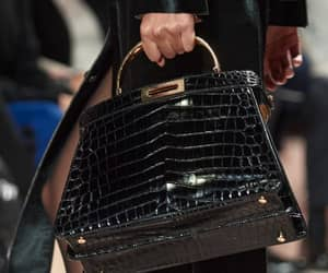 bag, fendi, and womenswear image
