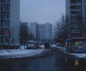 gray, russia, and snow image
