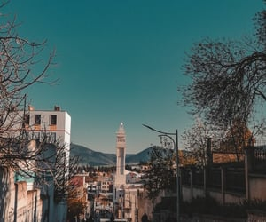 blue, mosque, and nature image
