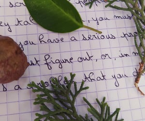 nature, notebook, and words image