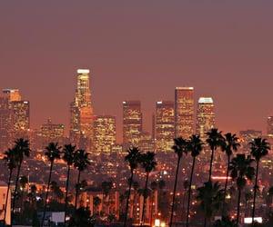 buildings, city lights, and la image