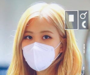 rose, blackpink, and airport image