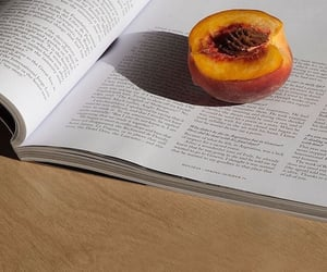 peach, fruit, and book image