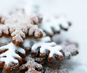 baking, cookie, and winter image