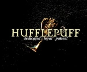 cup, harry potter, and hufflepuff image