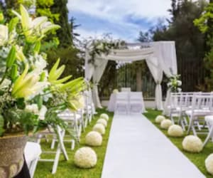wedding, dress, and wedding services image
