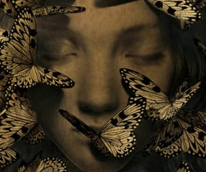 anne, butterflies, and dreaming image