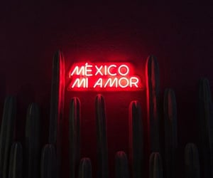 aesthetic, alternative, and amor image