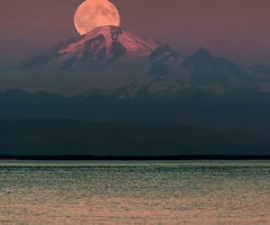 beautiful, escape, and nature image