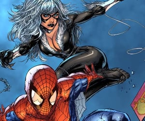 black cat, comics, and spider-man image