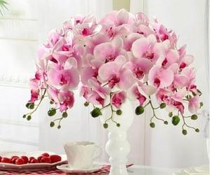 decoracion, flores, and hogar image
