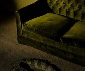 alligator, couch, and crocodile image