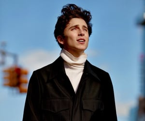 actor, talent, and timothee chalamet image