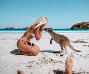 bahamas, bali, and beach image