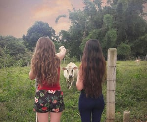 blond, cow, and friendship image