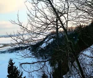 bridge, snow, and canada image