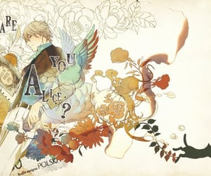 alice, anime, and cover image