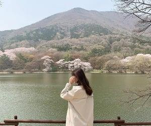 korea and spring image