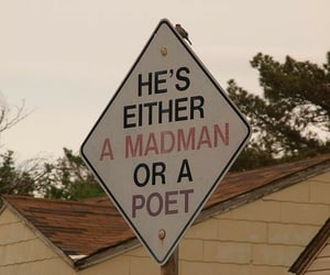 poet, quotes, and aesthetic image
