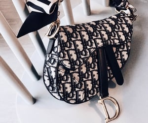 bag, brands, and expensive image