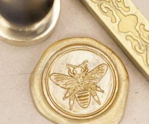 bee, honey, and aesthetic image