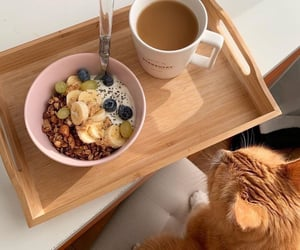 breakfast, interesting, and photo image