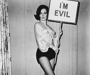 bitch, evil, and vintage image