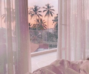 palm tree, paradise, and instagram image
