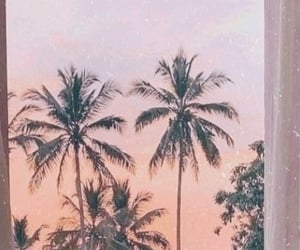 header, sunset, and twitter image