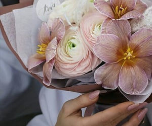 bouquet, pink flowers, and pink wallpaper image