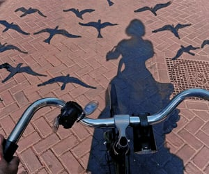 aesthetic, bike, and birds image
