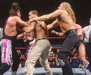 wwe, triple h, and bret hart image