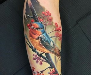 arm, awesome, and bird image