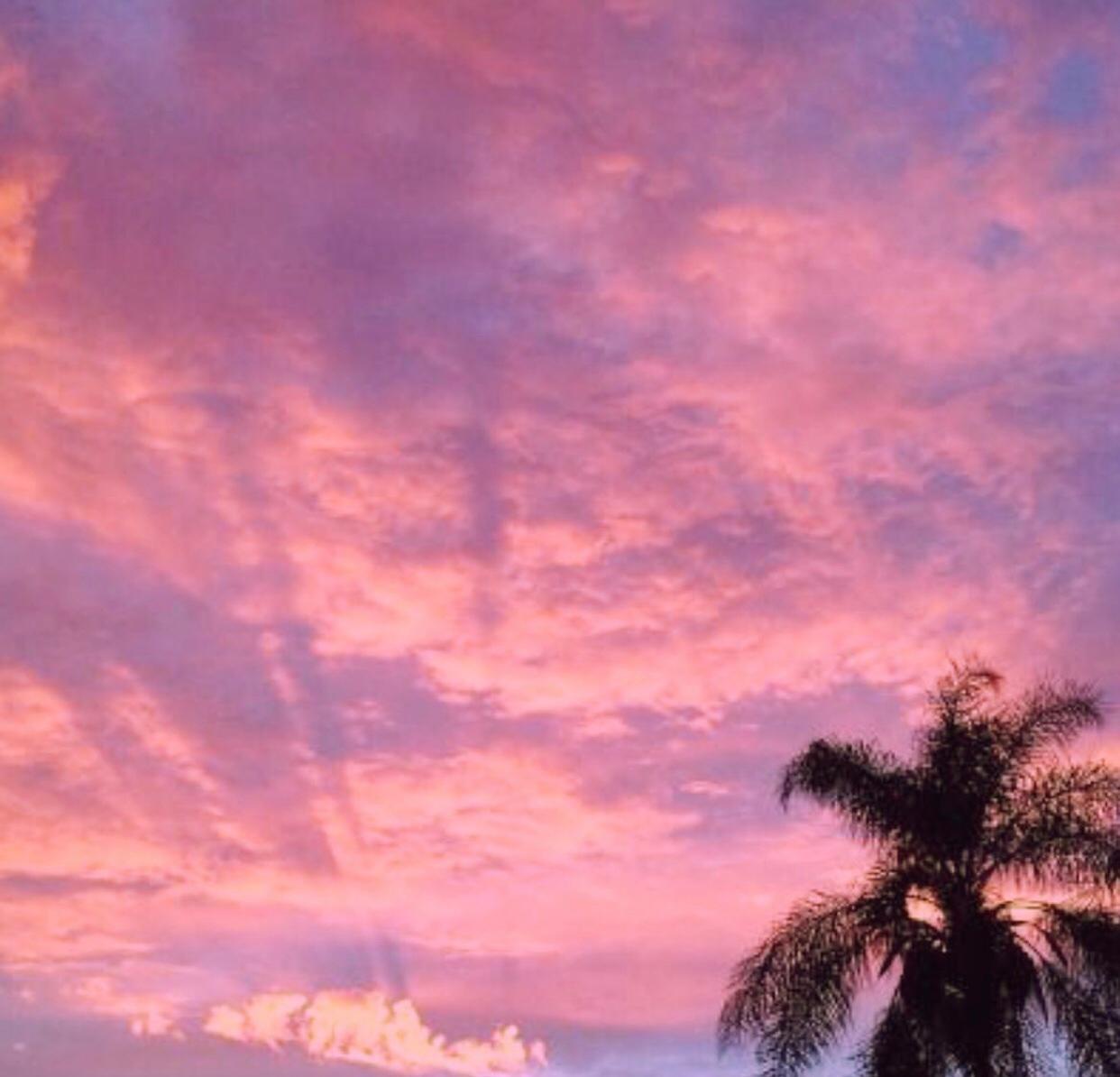 beautiful, pink, and sky image