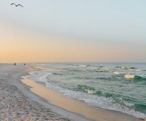 beach, green, and sea image