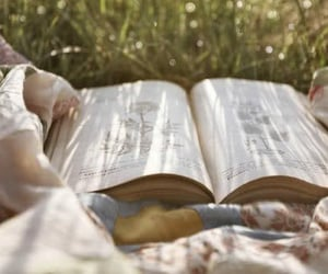 book, nature, and summer image