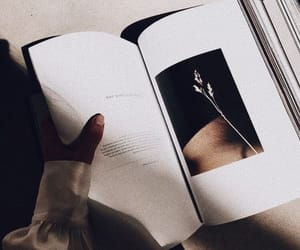 aesthetic, books, and lifestyle image