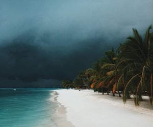 blue, clouds, and palms image