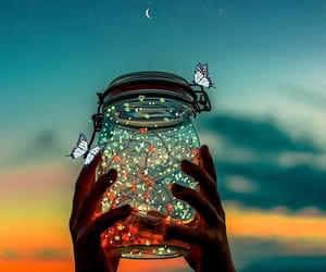 aesthetic, jar, and butterflies image