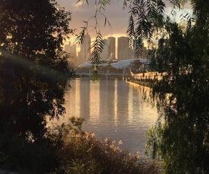 aesthetic, big city, and dusk image