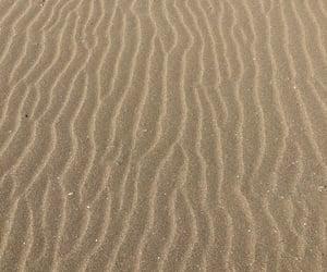 beach, sea, and print image