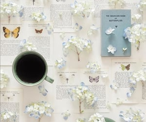 book, butterflies, and coffee image
