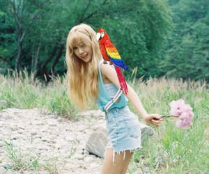 kpop, mimi, and ohmygirl image