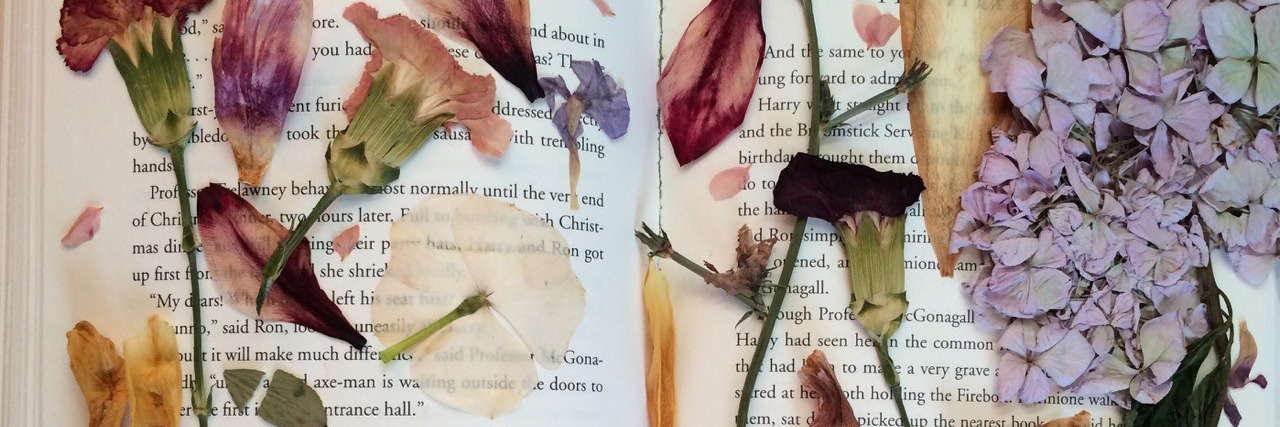 article, love, and book image